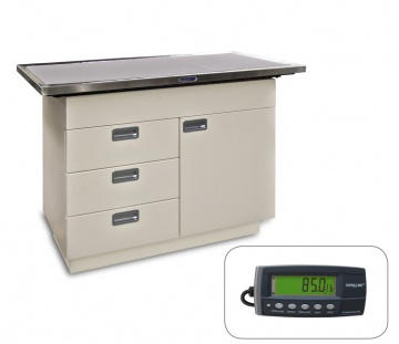 Mark IV Examination Table with K9-W8 Scale